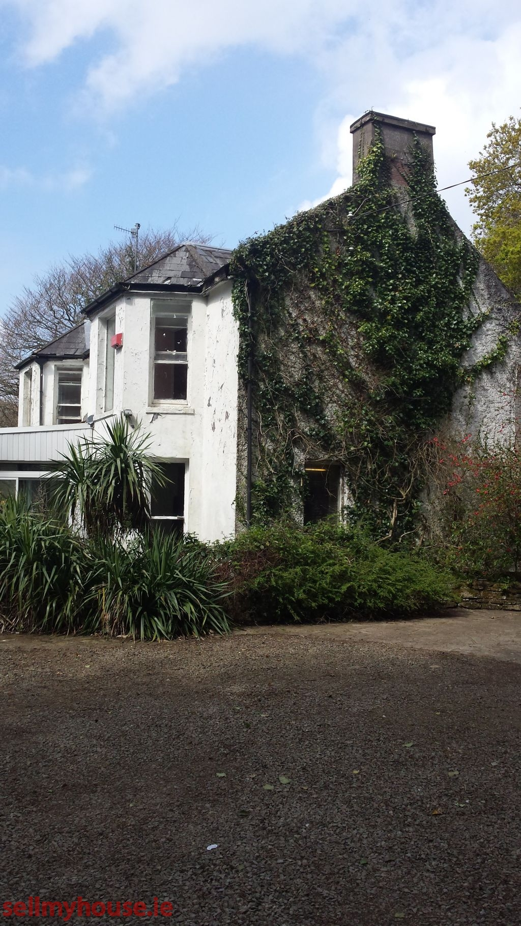 sale for cottages in seaside irel cottage by rental the sea coastal ireland