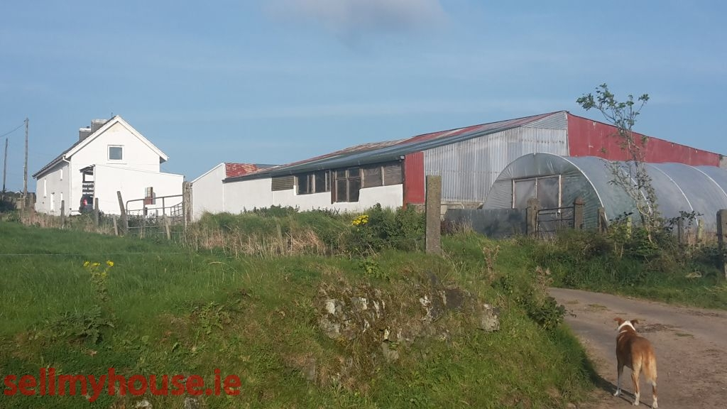 Ardfield Farmhouse for sale